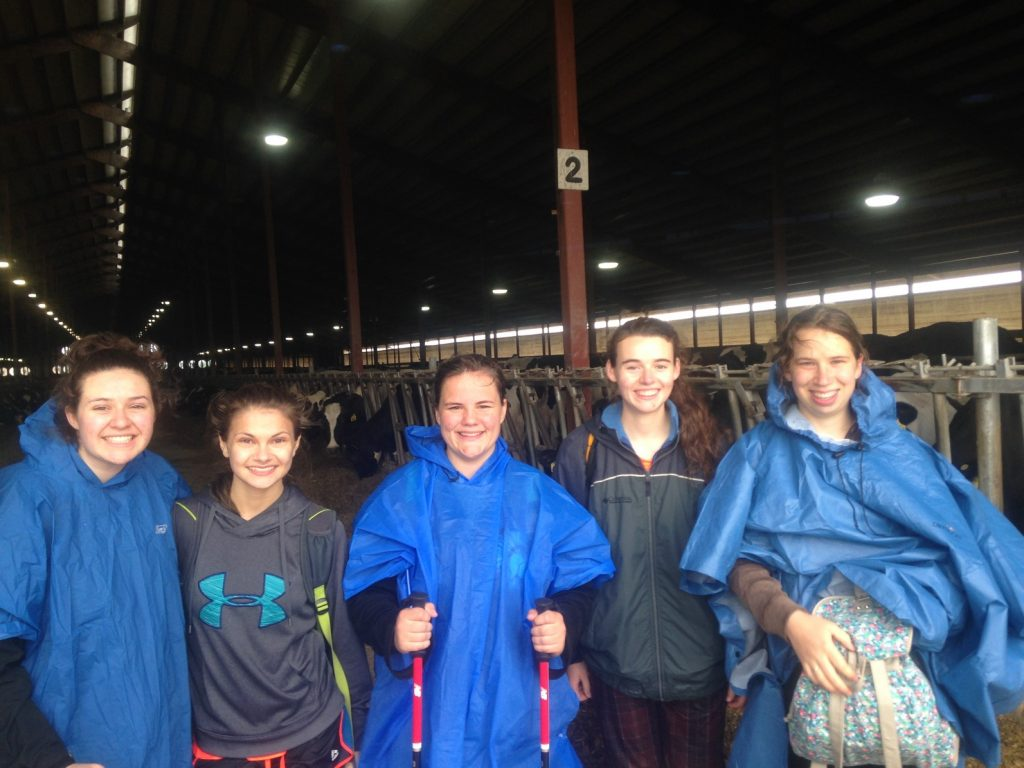 youth pilgrims in ponchos